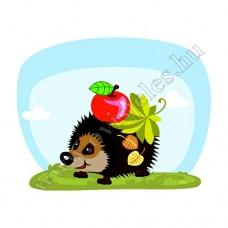 Póló: Süni-almával