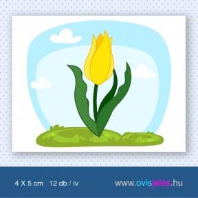 Tulipán-sárga -12 db-os ovisjel