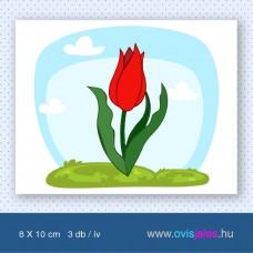 Tulipán-piros -3 db-os ovisjel
