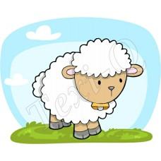 Póló: Bárány