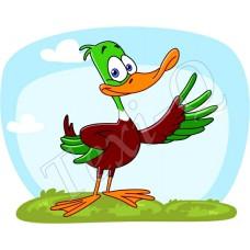 Póló: Kacsa zöld-bordó