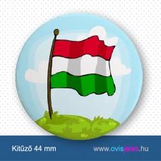Zászló -ovisjel kitűző