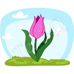 Póló: Tulipán pink